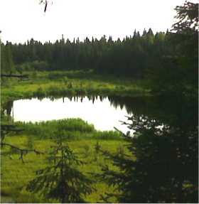 Reflection Lake in Prince George