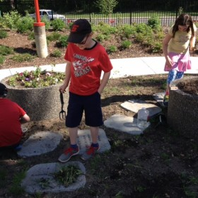Planting flowers at the Knowledge Garden