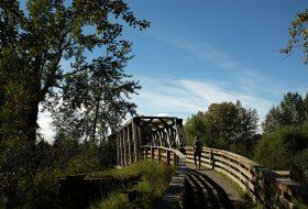 Cottonwood Island Park