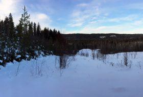 Otway Nordic Ski Centre in winter