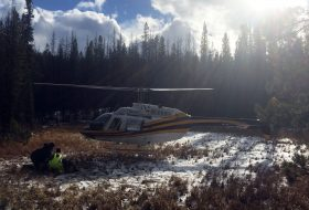 Forestry workers picked up by a helicopter in the woods.