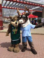 two mascots
