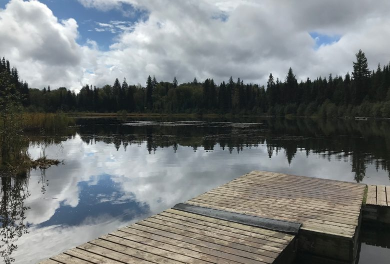 fishing dock and lake