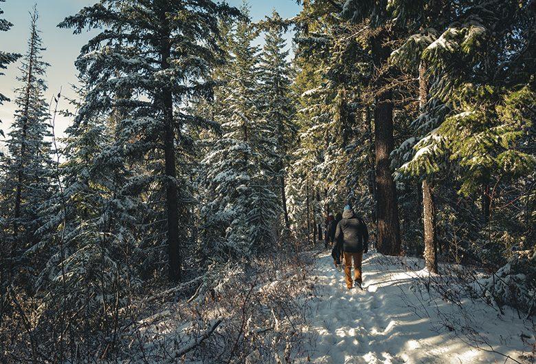 People hiking LC Gunn Park